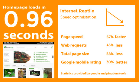 internet-reptile-stats